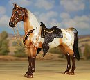 2015 Breyer Live Show Benefit Program - Razzmatazz